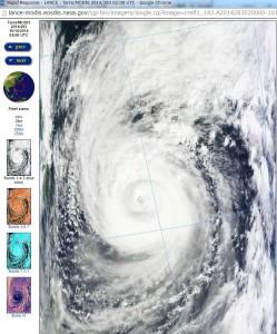 taifu19