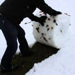 こんな雪かきの方法が! スコップを使わずに雪かきする裏技